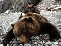 Зимняя охота на медведя- один из самых отвратительных и трусливых видов...