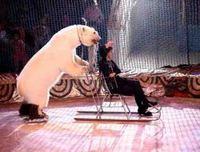 ...труппа этого шоу была создана в 1999 году и... С 19 марта в Екатеринбургском цирке стартует новая программа .